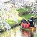 Photos: 春の川越-10