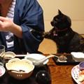 Photos: 私にもちょうだい!!