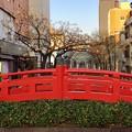 Photos: 日本三大がっかり名所!!