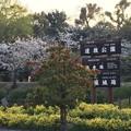 Photos: 今朝の道後公園