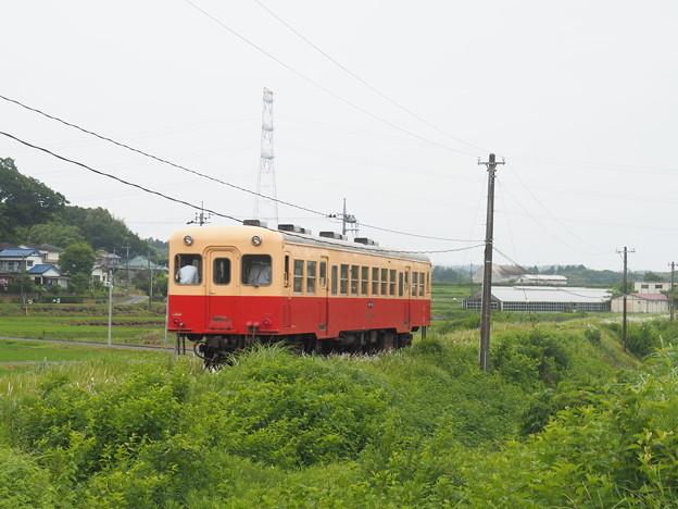 P6060866