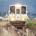 写真: PC050077