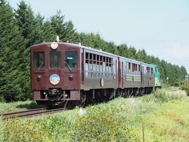 富良野・美瑛ノロッコ号 鹿討駅