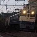 Photos: 早朝のEF65