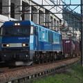 Photos: 浦佐駅 貨物列車