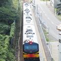 Photos: 五能線 千畳敷駅俯瞰 リゾートしらかみくまげら