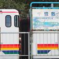 Photos: 五能線 千畳敷駅 リゾートしらかみくまげら
