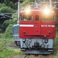 Photos: 仙山線紅葉号 山寺~面白山高原