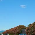 写真: 真夏の高速道路