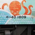 キハ40 1809「道南 海の恵み」7