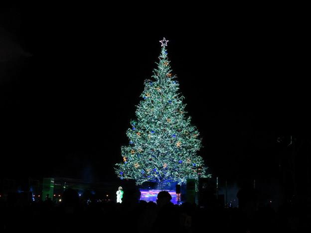 函館クリスマスファンタジー 39