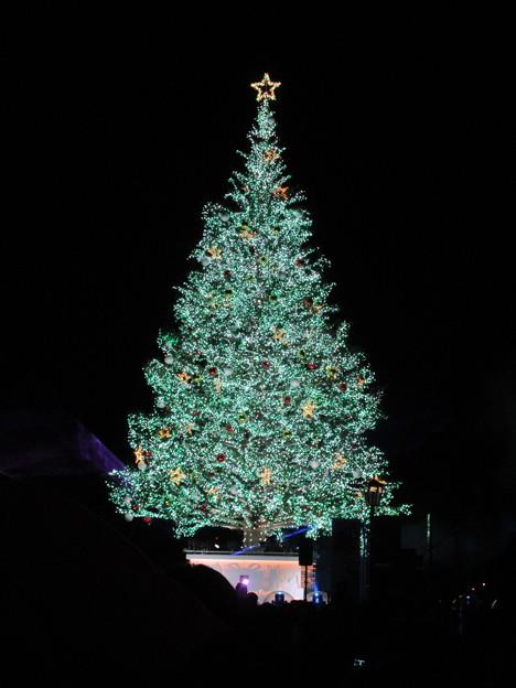 函館クリスマスファンタジー 41