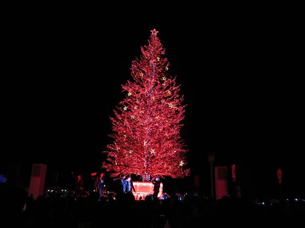 函館クリスマスファンタジー2019 13