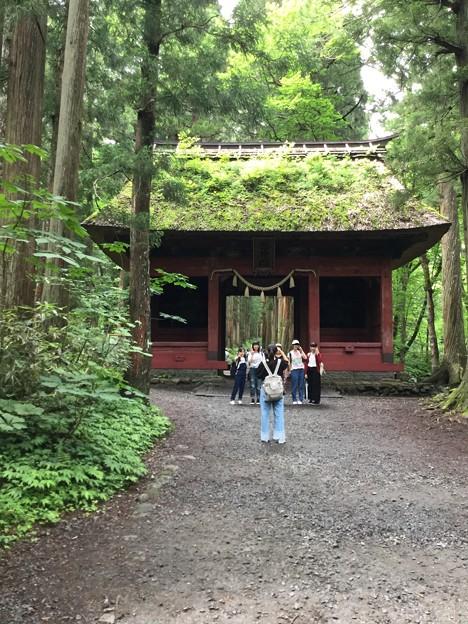 1702-戸隠神社(随神門)