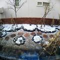 写真: 雪の庭ワイド