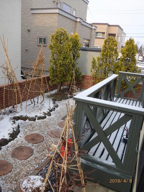 Photos: 手摺の雪