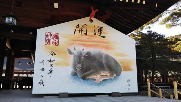 橿原神宮絵馬