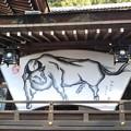 Photos: 大神神社絵馬