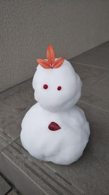 Photos: ミニ雪だるま~