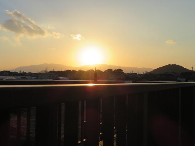 Photos: 夕陽