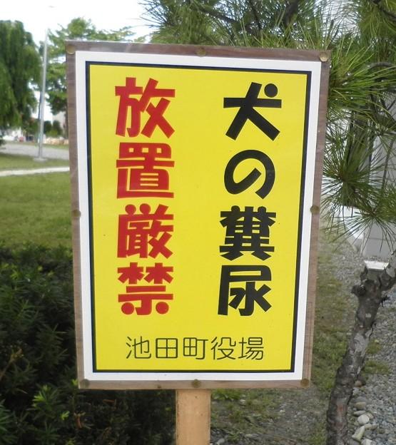 犬糞~池田町