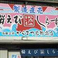 Photos: 桜えび・しらす