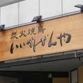 Photos: 諸説ありテロップ