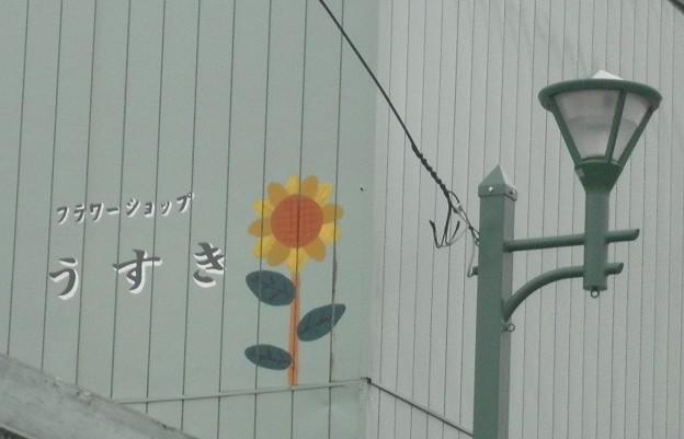 Photos: 外套(がいとう)