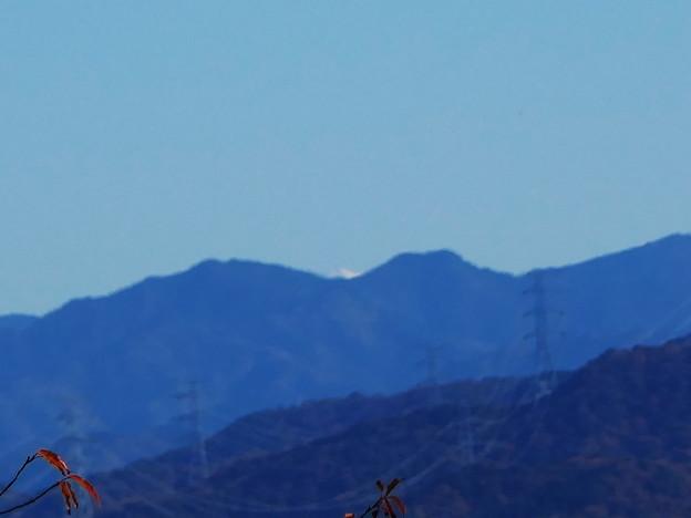 富士山?遠望