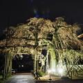 Photos: 宿縁寺2