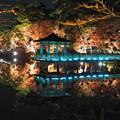 Photos: 岡崎東公園2