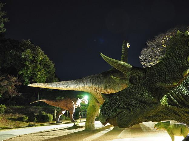 岡崎東公園4