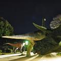 Photos: 岡崎東公園4