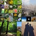 Photos: 平成lover's