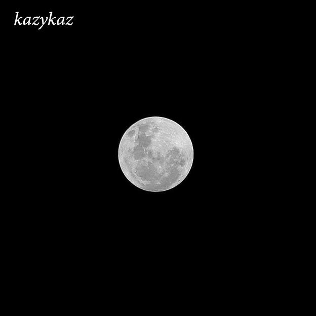 Halloween&Blue Moon