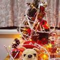 Photos: クリスマス始めました!