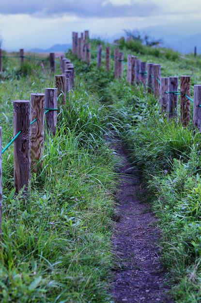 山頂への路