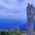Photos: 登頂