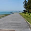 Photos: 土佐の海辺にて