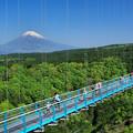 Photos: 三島スカイウォーク1