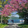 Photos: 芦ノ湖2