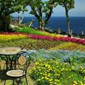 写真: 城ケ崎・花の館2