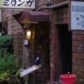 写真: 古書街の店