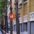 写真: 神田共立講堂