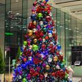 オフィスロビーにクリスマス