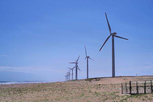 Photos: 風車は続く