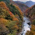 Photos: 老神の秋2