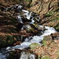 晩秋の強清水の滝