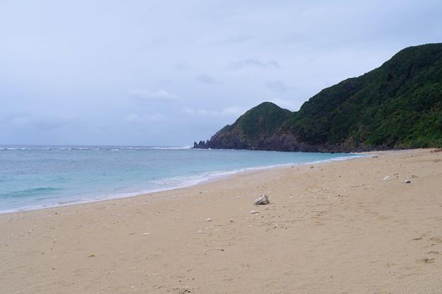 ウミガメの浜