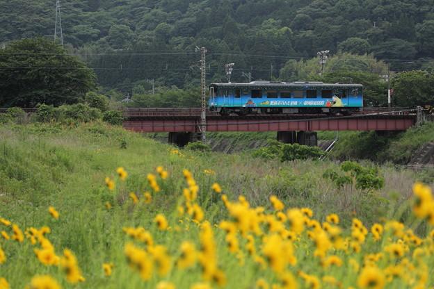 鉄橋渡るおれんじ鉄道